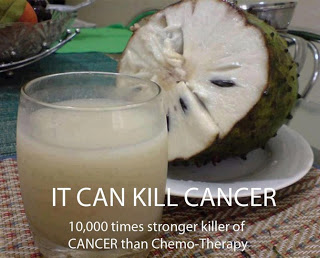 Soursop Fruit  Kills Cancer Naturally  10 000 times stronger than Chemo