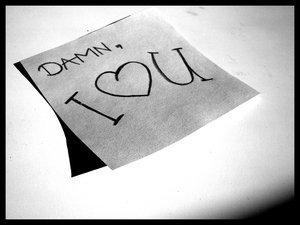 Damn i love you