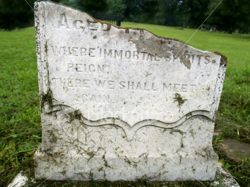 Ist2 824822 Where Immortal Spirits Reign Tomb Stone Color