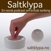 Saltklypa logo 300x300